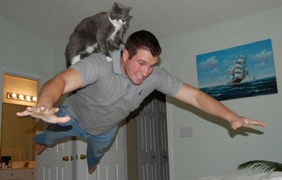 Flying Superman with Cat Optical Illusion