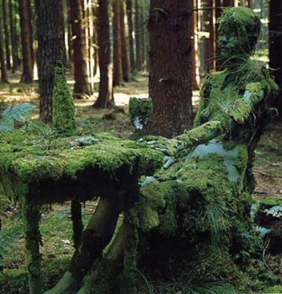 The Mossy Lady Optical Illusion