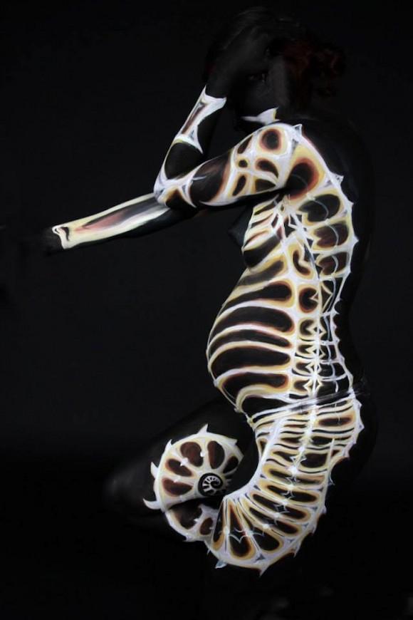 Sea Horse Optical Illusion