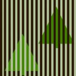 color illusion
