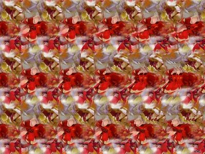Rose Stereogram Illusion
