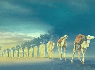 Camels in The Night Illusion