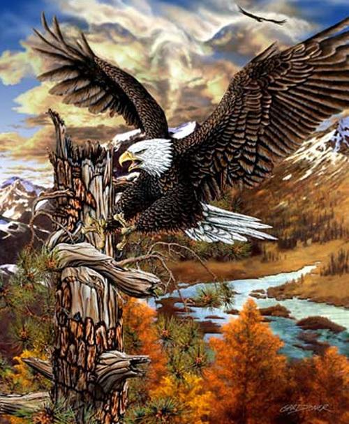 9 Hidden Eagles Optical Illusion