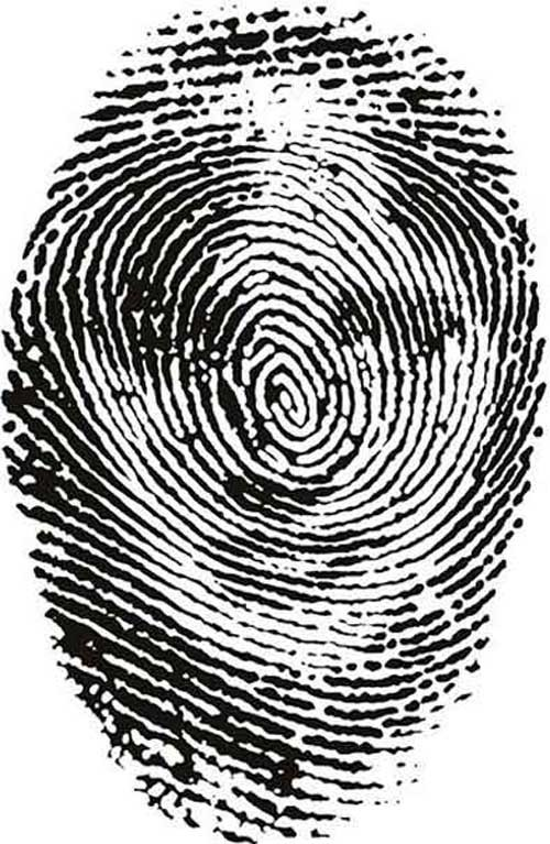 Optical Illusion Fingerprints