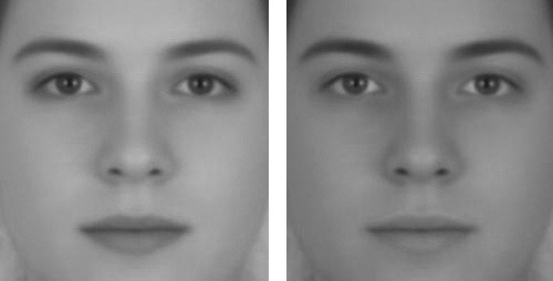 androgynous face optical illusion