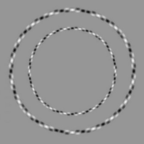 Irregular Circles Illusion