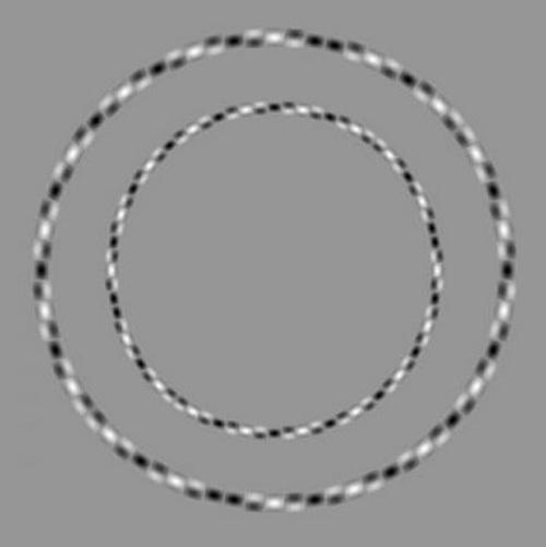 Irregular Circles Illusion