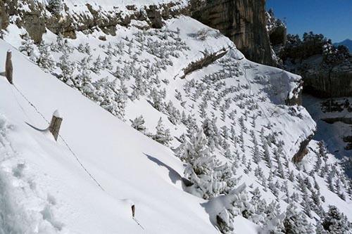 News and Les Alpes Optical Illusion