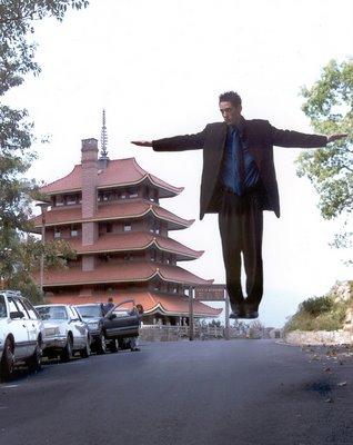 Wayne Hoffmans Levitation