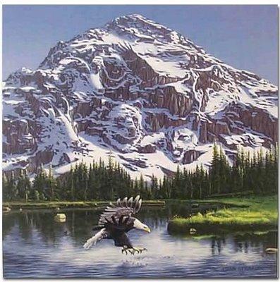 John Van Straalens Purple Mountains Majesty