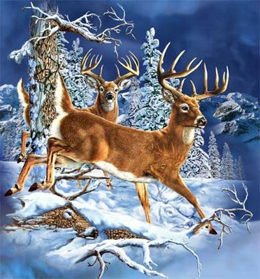 Gardners Deer Forrest