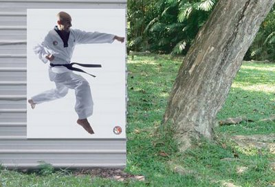 Karate Kid Illusions