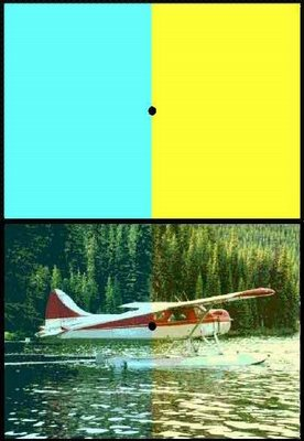 Hydroplane Optical Illusion