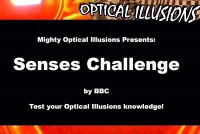 Senses Challenge