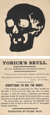 Yoricks Skull Vintage Illusion