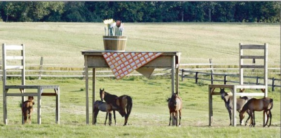 horse-table-converted & Horses and Tables Illusion