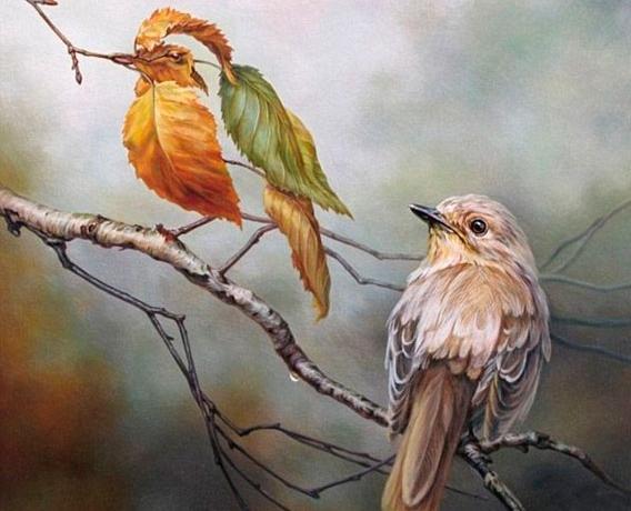 Painted Bird Optical Illusion