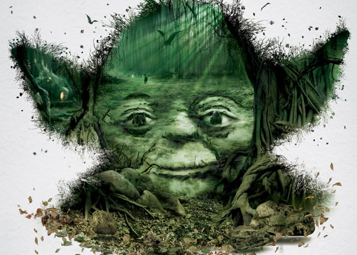 Star Wars Yoda Optical Illusion