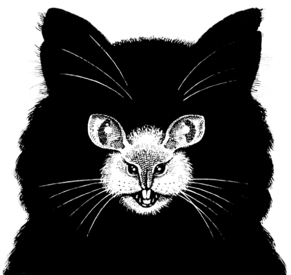 Cat and Mouse Optical Illusion