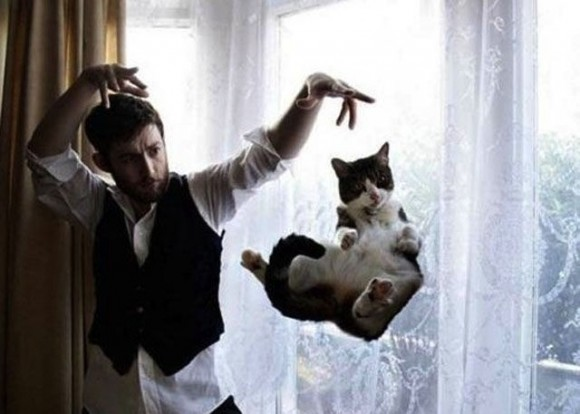 Magician and cat optical illusion picture