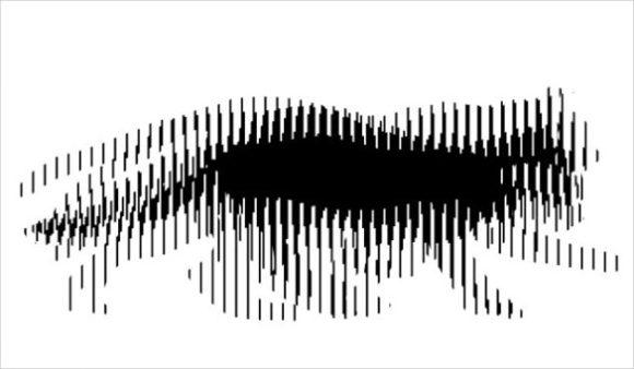 dog or cat pet illusion