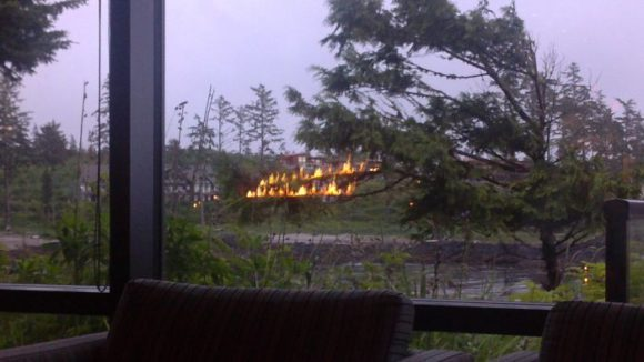 forest fire reflection illusion