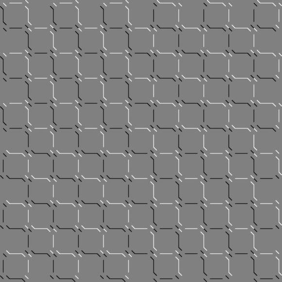 lightness flipped turtle illusion