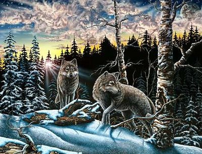 How Many Wolves Can You Find